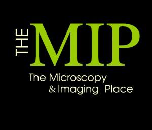 MIP_Black 3